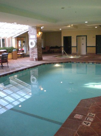 Embassy Suites by Hilton Anaheim North: Pool