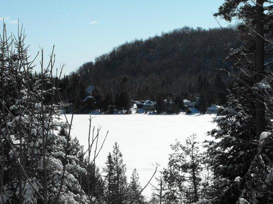 Manoir des pins: vus sur le lac