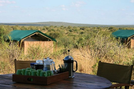 Laikipia Wilderness Camp:                   It's teatime