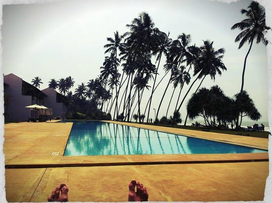 Vendol Resort - Wadduwa: The pool view from our sunbed