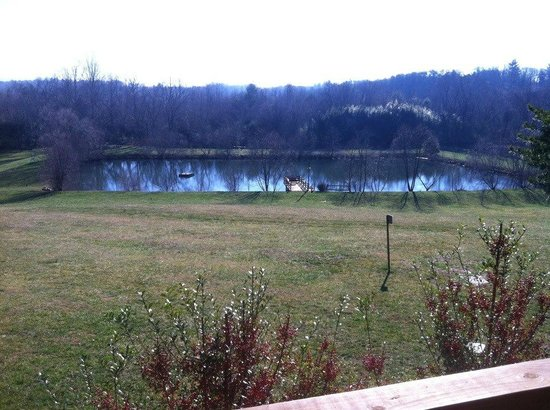 Barkwells, The Dog Lovers' Vacation Retreat:                   View from Lacey's to the pond