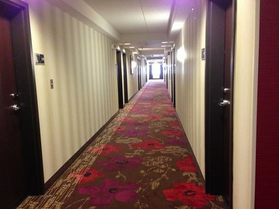 Hampton Inn and Suites Detroit/Airport-Romulus:                   Room hallways