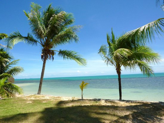 Coconut Paradise Resort:                   Meeresblick von Veranda und Terasse OG