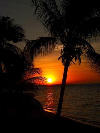 Coconut Paradise Resort:                   Sonnenuntergang von der Veranda aus