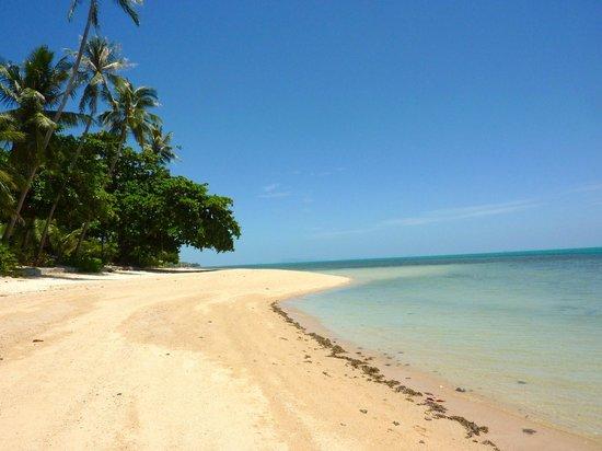 Coconut Paradise Resort:                   Strand vor der Villa