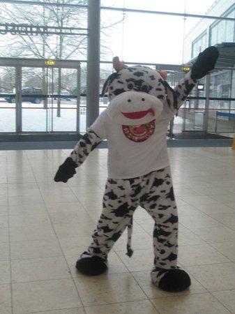 The Comedy Cow: Mascot