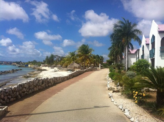 Plaza Resort Bonaire:                   Path along the beach