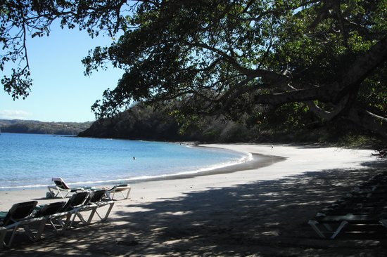 Occidental Papagayo - Adults only: A beach with shade is a huge bonus
