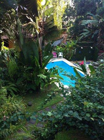 Pousada Recanto das Estrelas:                   piscina vista do segundo andar