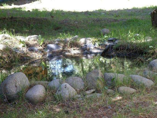 La Casa del Viajero: Las pequeñas fuentes artificiales de Don Agustin
