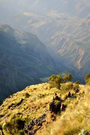 Simien Mountains National Park:                   One of the many viewpoints