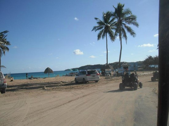 Sirenis Punta Cana Resort Casino & Aquagames: Dune Buggy Tour private beach
