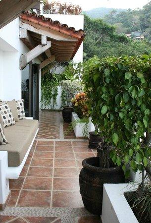 Casa Cupula: Terraza de la suite.