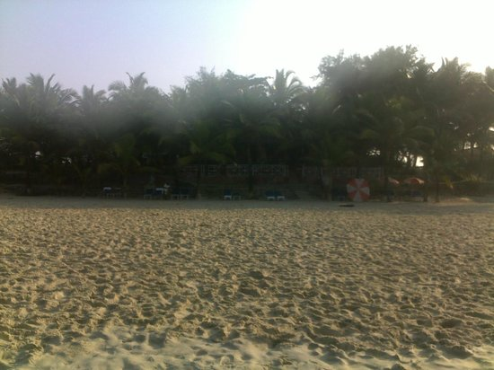 Furtado's Beach House:                   Вид на отель с пляжа