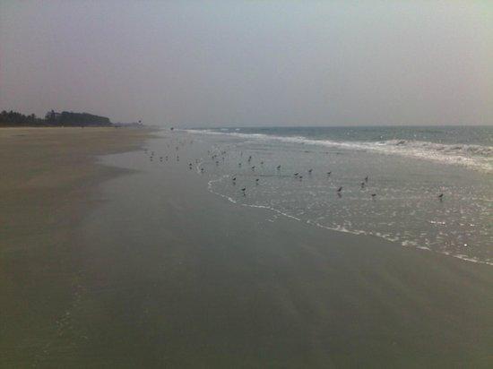 Furtado's Beach House:                   Пляж практически пустынный с нежным белым песком.