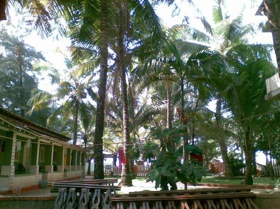 Furtado's Beach House:                   Территория отеля