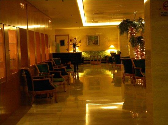 Lleo Hotel: Salone con pianoforte e zona internet