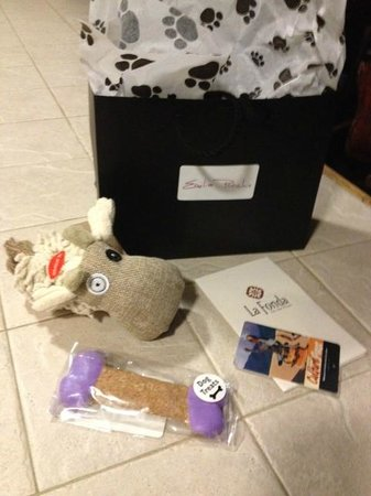 La Fonda on the Plaza: The Emilia Poochie Gift Bag complete with toy and gourmet biscuit.