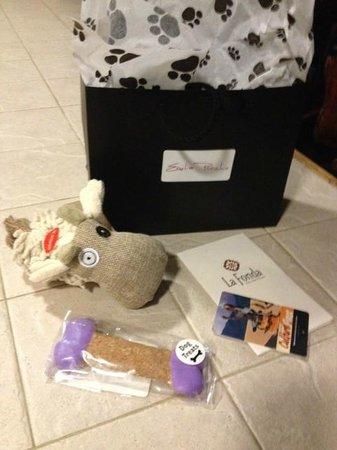 لا فوندا أون ذا بلازا: The Emilia Poochie Gift Bag complete with toy and gourmet biscuit.