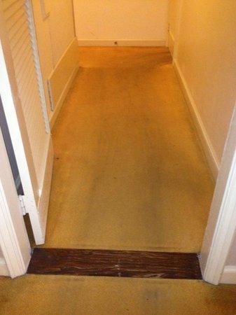 The Ritz-Carlton, Kapalua:                   Horrible Dirty Carpet