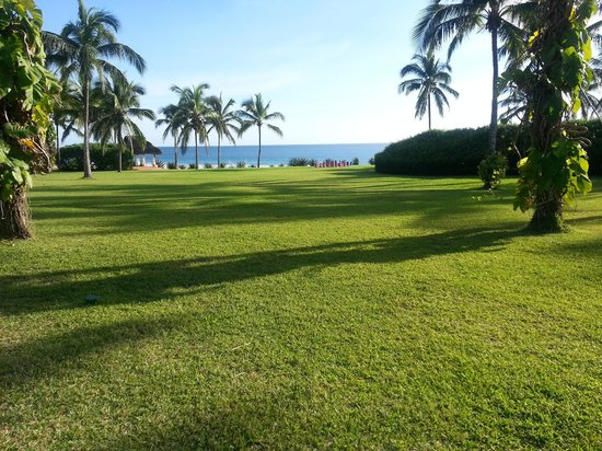 Las Alamandas:                   Lawn going down to Beach and Pool