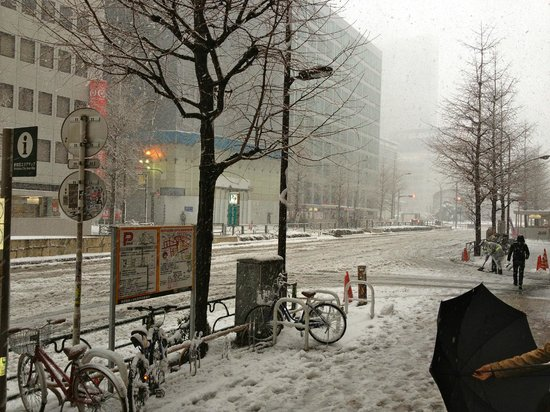 Hotel Century Southern Tower: Snow in Tokyo