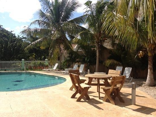 Coral Paradise Resort:                   coral paradise