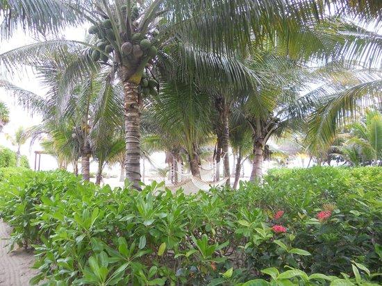 El Dorado Royale, by Karisma: grounds