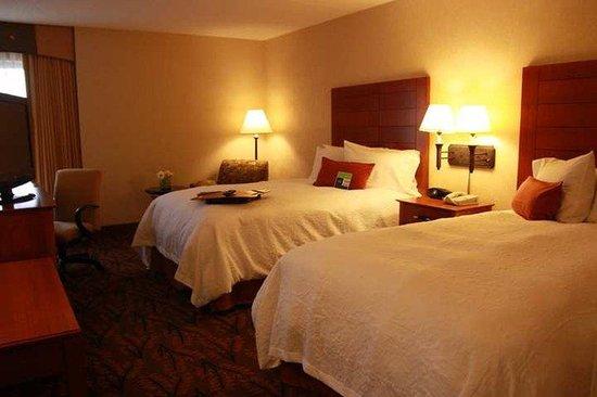 Hampton Inn Boston-Logan Airport: Guest Room