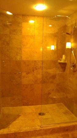 La Cantera Resort & Spa:                   oversized shower in 2nd bathroom
