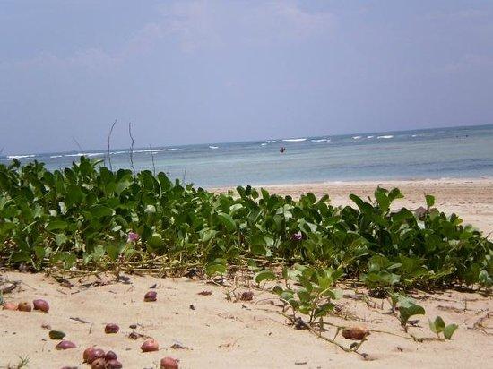Quarta Praia : otra vista