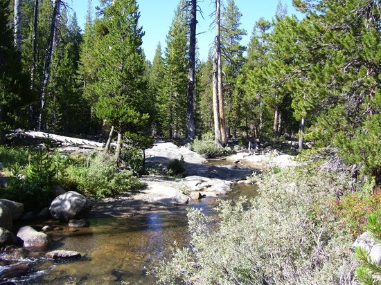 Tuolumne Meadows Lodge: River by lodge in August dry season
