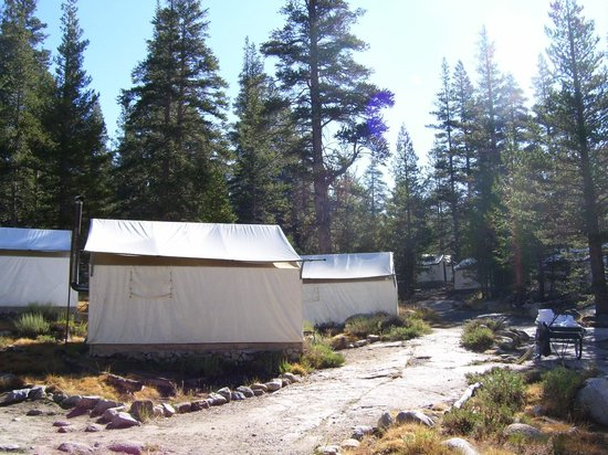 Tuolumne Meadows Lodge: Tolumne Meadows Lodge tent sites