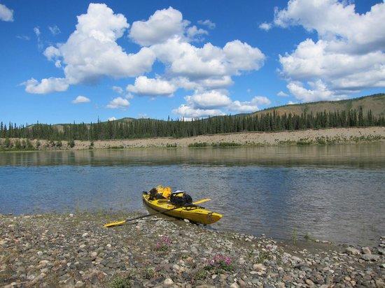 Bluejay Suites Bed & Breakfast: kayaking