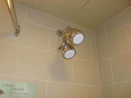 The Westin Annapolis: showerhead