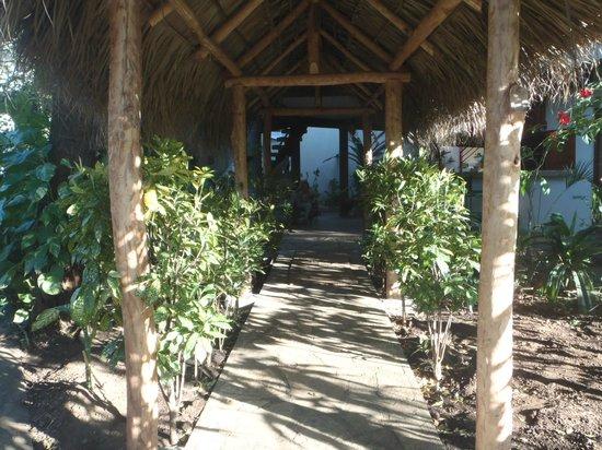 Bahona tropical: entry inside