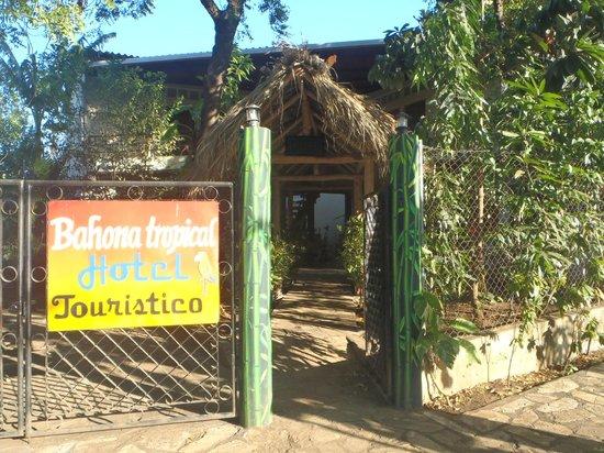Bahona tropical: entry