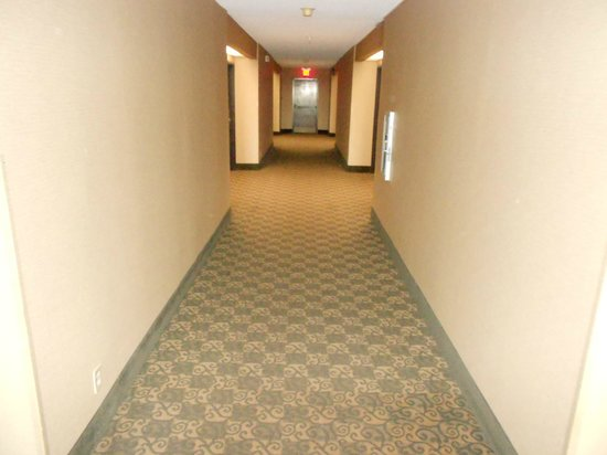 Windemere Hotel and Conference Center :                   The hallways... rug needs renovation