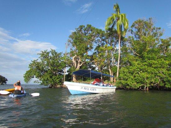 Daktours: kayak por las isletas