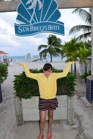 SunBreeze Hotel:                   For my Samantha, who loves fun and beauty!