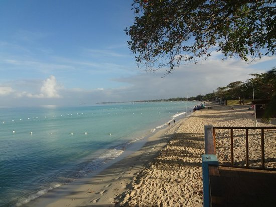Errol's Sunset Cafe and Guesthouse :                   the beach