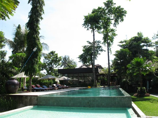 Y Resort Ubud: the pool