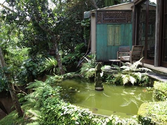 Villa Madu : the pond outside the ground floor bedroom.