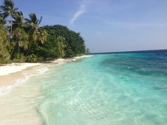 Fihalhohi Island Resort:                   trop beau
