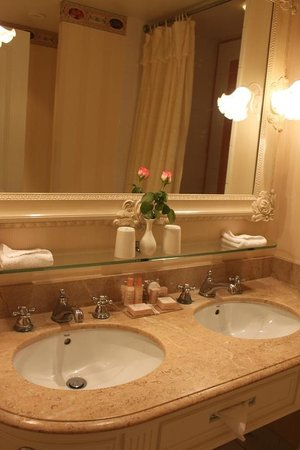 Disneyland Hotel: bathroom