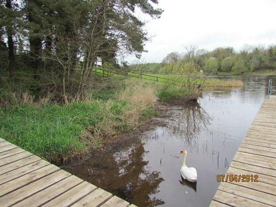 Corrigan's Shore House:                   Scenic walk