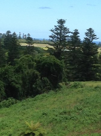 Hideaway Retreat Norfolk Island: View from the apartment.