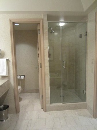 The Phoenician, Scottsdale: Bathroom Shower