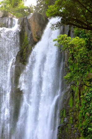Cascadas Farallas Waterfall Villas:                                     Vivid pic of Nauyaca Falls that was so appreciated to be a p