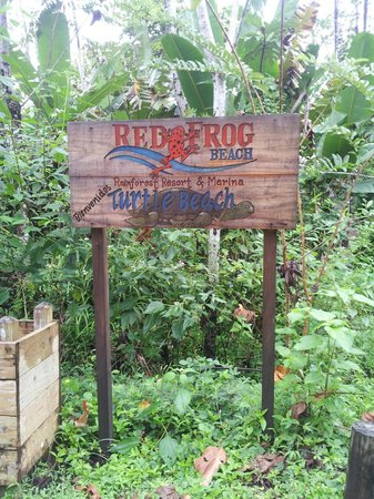 Bocas Island Lodge: Red Frog Beach